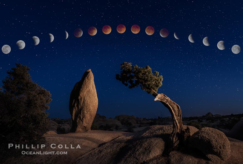 Lunar Eclipse Sequence, Juniper and Standing Rock, Joshua Tree, 2014