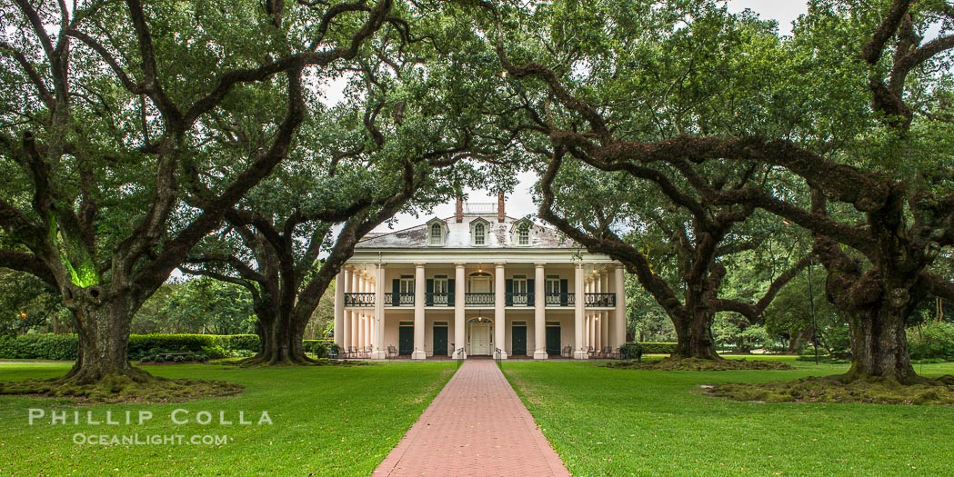 Oak Alley Plantation and Its Famous Tunnel of Old Oak Trees, Vacherie, Louisiana