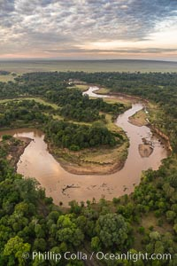 Aerial view of the Mara River with crocodiles and hippos, Maasai Mara, Kenya.  Photo taken while hot air ballooning at sunrise, Maasai Mara National Reserve