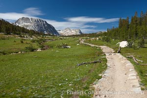 Alpine meadow and John Muir Trail, in Yosemite's high country on approach to Vogelsang High Sierra Camp. Yosemite National Park, California, USA, natural history stock photograph, photo id 23246