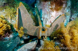 A boat anchor securely placed between underwater boulders, Guadalupe Island (Isla Guadalupe)