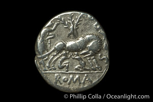 Ancient Roman coin, minted by Sexulus Pompeius Fostlus (137 B.C.), (silver, denom/type: Denarius)., natural history stock photograph, photo id 06501