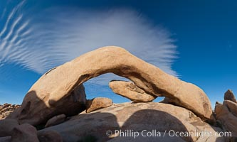 Arch Rock in Joshua Tree National Park.  A natural stone arch in the White Tank area of Joshua Tree N.P. Joshua Tree National Park, California, USA, natural history stock photograph, photo id 26722