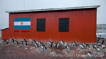 Argentine research hut on Petermann Island, Antarctica. Peterman Island, Antarctic Peninsula, Antarctica, Pygoscelis papua, natural history stock photograph, photo id 25633