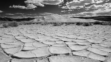 Arid and barren mud flats, dried mud, with the tall Eureka Dunes in the distance. Eureka Valley, Death Valley National Park, California, USA, natural history stock photograph, photo id 25281