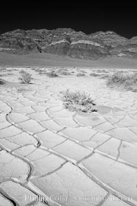 Arid and barren mud flats, dried mud. Eureka Valley, Death Valley National Park, California, USA, natural history stock photograph, photo id 25386