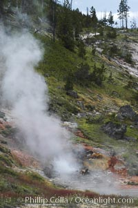 The Artist Paint Pots area of Yellowstone National Park holds steaming pools, mud pots (roiling mud mixed with sulfuric acid and steam) and paint pots (mud pots colored with dissolved minerals)
