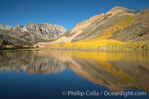 Aspens changing into fall colors, yellow and orange, are reflected in North Lake in October, Bishop Creek Canyon, Eastern Sierra. Bishop Creek Canyon, Sierra Nevada Mountains, Bishop, California, USA, Populus tremuloides, natural history stock photograph, photo id 17540