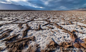 Erosion in the salt patterns of Badwater Playa, Death Valley National Park. California, USA, natural history stock photograph, photo id 30473
