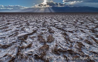 Erosion in the salt patterns of Badwater Playa, Death Valley National Park. California, USA, natural history stock photograph, photo id 30475