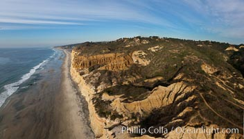Torrey Pines balloon aerial survey photo.  Torrey Pines seacliffs, rising up to 300 feet above the ocean, stretch from Del Mar to La Jolla. On the mesa atop the bluffs are found Torrey pine trees, one of the rare species of pines in the world. Peregine falcons nest at the edge of the cliffs. This photo was made as part of an experimental balloon aerial photographic survey flight over Torrey Pines State Reserve, by permission of Torrey Pines State Reserve. Torrey Pines State Reserve, San Diego, California, USA, natural history stock photograph, photo id 27276
