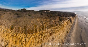 Torrey Pines balloon aerial survey photo.  Torrey Pines seacliffs, rising up to 300 feet above the ocean, stretch from Del Mar to La Jolla. On the mesa atop the bluffs are found Torrey pine trees, one of the rare species of pines in the world. Peregine falcons nest at the edge of the cliffs. This photo was made as part of an experimental balloon aerial photographic survey flight over Torrey Pines State Reserve, by permission of Torrey Pines State Reserve. Torrey Pines State Reserve, San Diego, California, USA, natural history stock photograph, photo id 27282