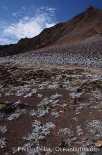 Bartolome. Bartolome Island, Galapagos Islands, Ecuador, natural history stock photograph, photo id 05581