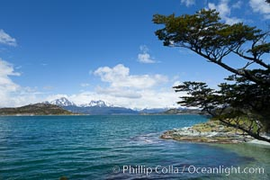 Beagle Channel from Tierra del Fuego National Park, Argentina. Tierra del Fuego National Park, Ushuaia, Argentina, natural history stock photograph, photo id 23608
