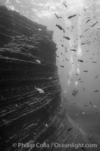 The Boiler, San Benedicto Island, Mexico, San Benedicto Island (Islas Revillagigedos)