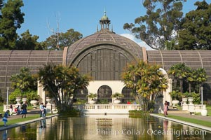 The Botanical Building in Balboa Park, San Diego.  The Botanical Building, at 250 feet long by 75 feet wide and 60 feet tall, was the largest wood lath structure in the world when it was built in 1915 for the Panama-California Exposition. The Botanical Building, located on the Prado, west of the Museum of Art, contains about 2,100 permanent tropical plants along with changing seasonal flowers. The Lily Pond, just south of the Botanical Building, is an eloquent example of the use of reflecting pools to enhance architecture. The 193 by 43 foot pond and smaller companion pool were originally referred to as Las Lagunas de las Flores (The Lakes of the Flowers) and were designed as aquatic gardens. The pools contain exotic water lilies and lotus which bloom spring through fall.  Balboa Park, San Diego. USA, natural history stock photograph, photo id 14578
