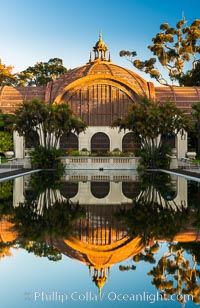 The Botanical Building in Balboa Park, San Diego. The Botanical Building, at 250 feet long by 75 feet wide and 60 feet tall, was the largest wood lath structure in the world when it was built in 1915 for the Panama-California Exposition. The Botanical Building, located on the Prado, west of the Museum of Art, contains about 2,100 permanent tropical plants along with changing seasonal flowers. The Lily Pond, just south of the Botanical Building, is an eloquent example of the use of reflecting pools to enhance architecture. The 193' by 43' foot pond and smaller companion pool were originally referred to as Las Lagunas de las Flores (The Lakes of the Flowers) and were designed as aquatic gardens. The pools contain exotic water lilies and lotus which bloom spring through fall. Balboa Park, San Diego, California, USA, natural history stock photograph, photo id 28822