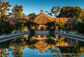The Botanical Building in Balboa Park, San Diego. The Botanical Building, at 250 feet long by 75 feet wide and 60 feet tall, was the largest wood lath structure in the world when it was built in 1915 for the Panama-California Exposition. The Botanical Building, located on the Prado, west of the Museum of Art, contains about 2,100 permanent tropical plants along with changing seasonal flowers. The Lily Pond, just south of the Botanical Building, is an eloquent example of the use of reflecting pools to enhance architecture. The 193' by 43' foot pond and smaller companion pool were originally referred to as Las Lagunas de las Flores (The Lakes of the Flowers) and were designed as aquatic gardens. The pools contain exotic water lilies and lotus which bloom spring through fall. USA, natural history stock photograph, photo id 28823