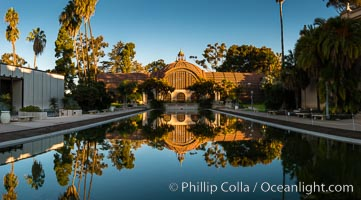 The Botanical Building in Balboa Park, San Diego. The Botanical Building, at 250 feet long by 75 feet wide and 60 feet tall, was the largest wood lath structure in the world when it was built in 1915 for the Panama-California Exposition. The Botanical Building, located on the Prado, west of the Museum of Art, contains about 2,100 permanent tropical plants along with changing seasonal flowers. The Lily Pond, just south of the Botanical Building, is an eloquent example of the use of reflecting pools to enhance architecture. The 193' by 43' foot pond and smaller companion pool were originally referred to as Las Lagunas de las Flores (The Lakes of the Flowers) and were designed as aquatic gardens. The pools contain exotic water lilies and lotus which bloom spring through fall. Balboa Park, San Diego, California, USA, natural history stock photograph, photo id 28825