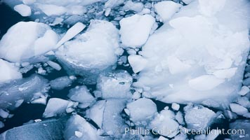 Brash ice floats on cold, dark Antarctic waters, Cierva Cove