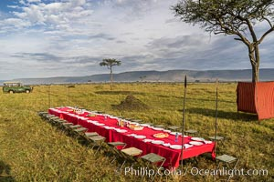 Breakfast on the Maasai Mara Plains, Kenya, Maasai Mara National Reserve