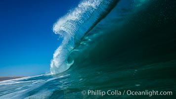 Breaking wave, morning, barrel shaped surf, California. California, USA, natural history stock photograph, photo id 27990