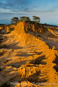 Broken Hill and view to La Jolla, from Torrey Pines State Reserve, sunrise. San Diego, California, USA, natural history stock photograph, photo id 28398