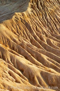 Broken Hill is an ancient, compacted sand dune that was uplifted to its present location and is now eroding. Torrey Pines State Reserve, San Diego, California, USA, natural history stock photograph, photo id 12022