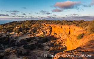 Broken Hill with the Pacific Ocean in the distance. Broken Hill is an ancient, compacted sand dune that was uplifted to its present location and is now eroding, Torrey Pines State Reserve, San Diego, California