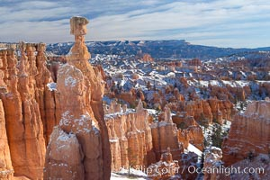Bryce Canyon hoodoos line all sides of the Bryce Amphitheatre. Bryce Canyon National Park, Utah, USA, natural history stock photograph, photo id 18619