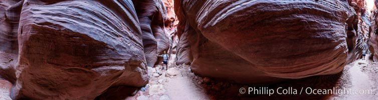 Buckskin Gulch hiker.  A hiker moves through the deep narrow passages of Buckskin Gulch, a slot canyon cut deep into sandstone by years of river-induced erosion.  In some places the Buckskin Gulch narrows are only about 15 feet wide but several hundred feet high, blocking sunlight.  Flash floods are dangerous as there is no escape once into the Buckskin Gulch slot canyons.  This is a panorama made of sixteen individual photos, Paria Canyon-Vermilion Cliffs Wilderness, Arizona