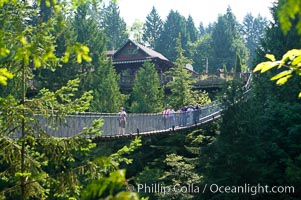 Capilano Suspension Bridge, 140 m (450 ft) long and hanging 70 m (230 ft) above the Capilano River.  The two pre-stressed steel cables supporting the bridge are each capable of supporting 45,000 kgs and together can hold about 1300 people. Vancouver, British Columbia, Canada, natural history stock photograph, photo id 21150