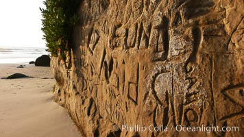 Graffiti is carved into soft sandstone cliffs at the beach. Carlsbad, California, USA, natural history stock photograph, photo id 19812