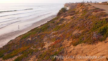 Eroding sandstone bluffs rise above a flat sand beach at sunset, small waves coming ashore, north of South Carlsbad State Beach. California, USA, natural history stock photograph, photo id 19819