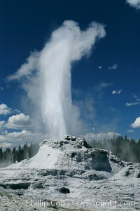 Castle Geyser erupting. Upper Geyser Basin. Upper Geyser Basin, Yellowstone National Park, Wyoming, USA, natural history stock photograph, photo id 07217