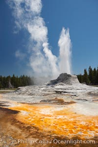 Castle Geyser erupts with the colorful bacteria mats of Tortoise Shell Spring in the foreground.  Castle Geyser reaches 60 to 90 feet in height and lasts 20 minutes.  While Castle Geyser has a 12 foot sinter cone that took 5,000 to 15,000 years to form, it is in fact situated atop geyserite terraces that themselves may have taken 200,000 years to form, making it likely the oldest active geyser in the park. Upper Geyser Basin. Yellowstone National Park, Wyoming, USA, natural history stock photograph, photo id 13426