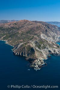 Catalina Island, West End. California, USA, natural history stock photograph, photo id 25986