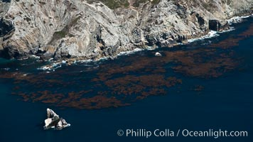 Catalina Island, showing kelp beds around Eagle Rock and West End