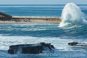 Big Surf breaks on Children's Pool, harbor seals protected on the beach, La Jolla, California