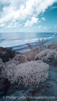 Coastal bluffs, waves, sky and clouds, Carlsbad, California