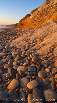 Cobblestones fall to the sand beach from the sandstone cliffs in which they are embedded. Carlsbad, California, USA, natural history stock photograph, photo id 21773