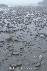 Cobblestones on the beach, low tide, Ruby Beach, Olympic National Park, Washington