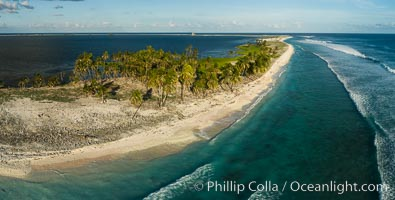Coconut palm trees on Clipperton Island, aerial photo. Clipperton Island is a spectacular coral atoll in the eastern Pacific. By permit HC / 1485 / CAB (France)