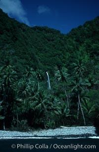 Cocos Island. Cocos Island, Costa Rica, natural history stock photograph, photo id 02045