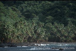 Shoreline, Cocos Island