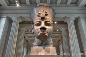 Colossal granite head of Amenhotep III, from the temple of Mut, Karnak, Egypt. Originally 18th Dynasty, around 1370 BC. British Museum, London, United Kingdom, natural history stock photograph, photo id 28322