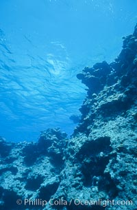 Coral bommies in Rose Atoll Lagoon, Rose Atoll National Wildlife Sanctuary
