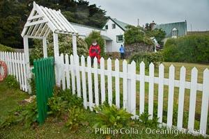 Cottage on Westpoint Island. Westpoint Island, Falkland Islands, United Kingdom, natural history stock photograph, photo id 23957