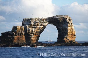 Darwins Arch, a dramatic 50-foot tall natural lava arch, rises above the ocean a short distance offshore of Darwin Island