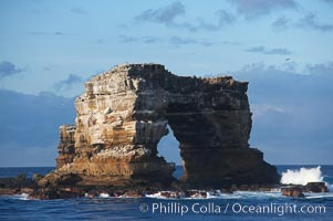Darwins Arch, a dramatic 50-foot tall natural lava arch, rises above the ocean a short distance offshore of Darwin Island. Darwin Island, Galapagos Islands, Ecuador, natural history stock photograph, photo id 16626